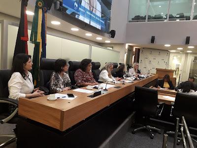 CPI do Feminicídio realiza reunião com representantes da Justiça