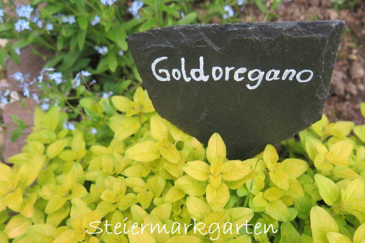 Pflanzenbeschriftung-Pflanzenschilder-Schieferplatten-Steiermarkgarten