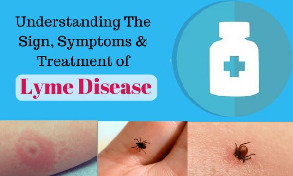 lyme disease and symptoms