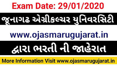 Junagadh Agriculture University Recruitment, JAU Recruitment 2020, Ojas Maru Gujarat, Gujarat Bharti 2020