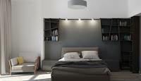 Bookshelves in master bedroom