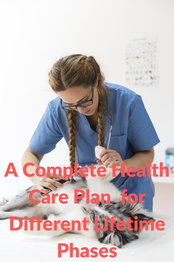A Complete Health Care Plan  for Different Lifetime Phases