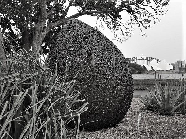 Magnolia by Bronwyn Oliver | Sydney Public Art