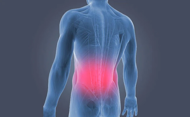 Ways to Get Rid of Your All Body and Acute Low Back Pain Instantly-lower back pain-image