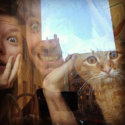 Тот самый кот Гекльберри