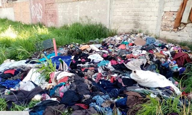 Cochinos contaminan el río tirando ropa usada