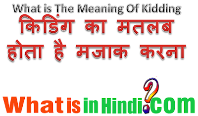 What is the meaning of Kidding in Hindi