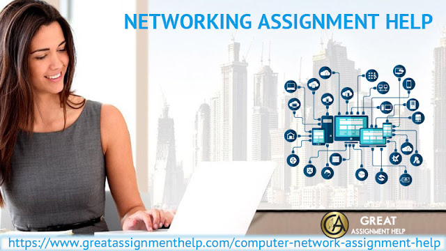 Connect with experienced writers via Networking Assignment Help Online services