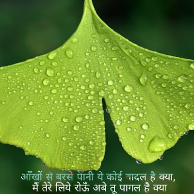 hindi quote dp