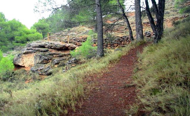 camino-botanico-torrebaja-valencia