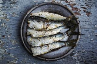 Düzenli Balık Tüketiminin İnsan Vücuduna Faydaları