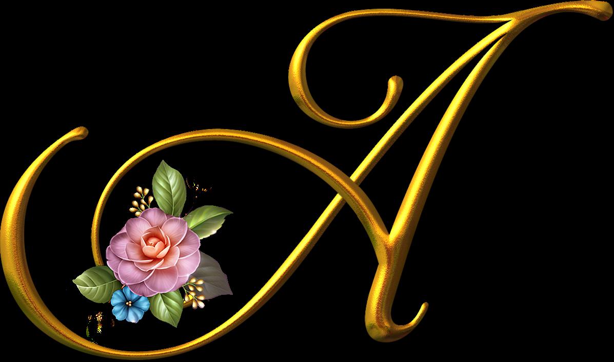 foto de Blindada por Deus: Alfabeto dourado com rosas png