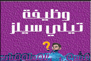 وظيفة تيلي سيلز - عمل من الهاتف - مصر الجديدة - القاهرة/شغل التسويق الالكتروني من المنزل