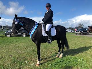 horse riding, dressage rider, dressage, equestrian underwear, padded pants