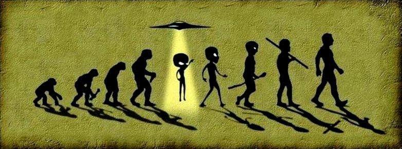 Evolution humain