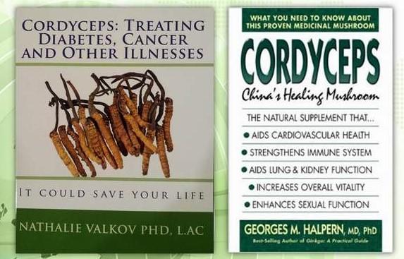 Antara buku kajian tentang Cordyceps