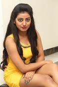 actress Tarunika new sizzling pics-thumbnail-20