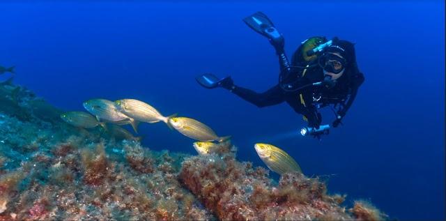 Stili di vita e mobilità più sostenibili per salvare il mare (e noi)