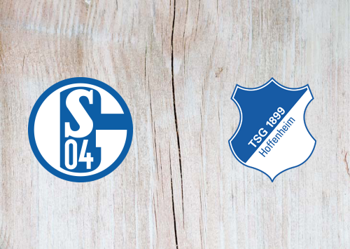 Schalke 04 vs Hoffenheim -Highlights 09 January 2021