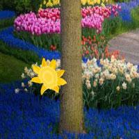 WowEscape-Floret Garden Escape