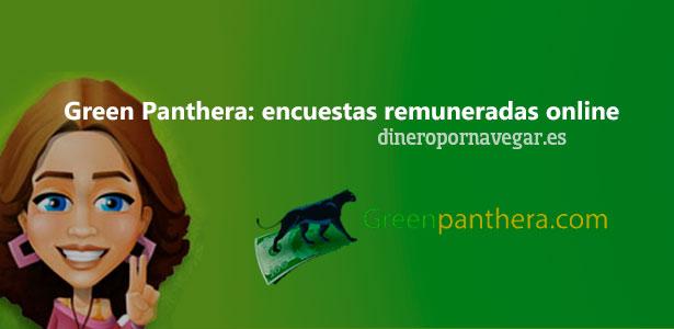 Green Panthera. Gana dinero con encuestas remuneradas