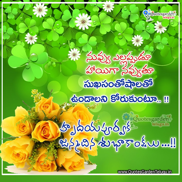 special-birthday-happy-birthday-wishes-in-telugu