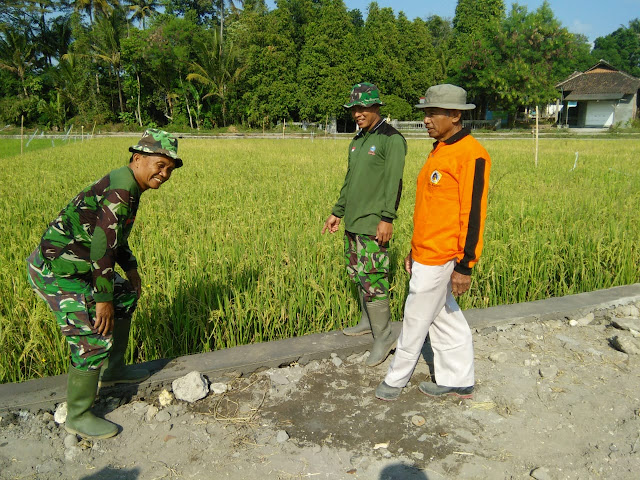 Petani Desa Jimbung Senang Jalan Kesawah Akan Dibetonisasi Satgas TMMD Reg 105 Kodim Klaten