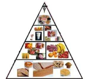 5 Food Groups - Eat to keep yourself healthy and fit.