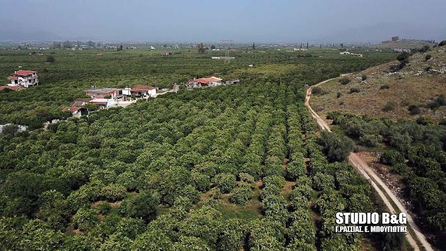 Αυξήσεις φόρου στα αγροτεμάχια - Το παράδειγμα με τον πορτοκαλεώνα στο Άργος
