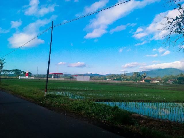 Desa Karangdoro Banyuwangi