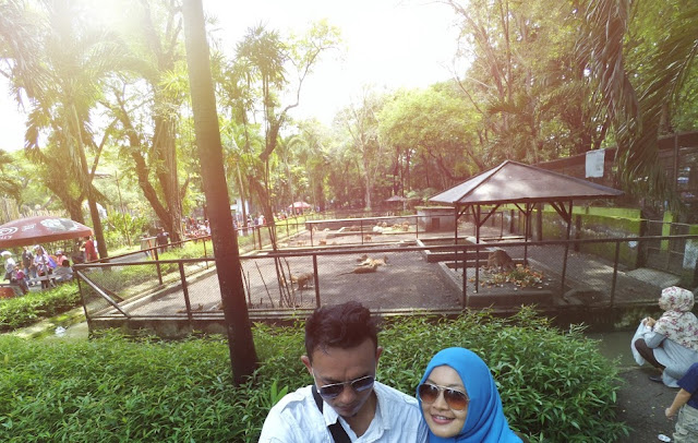Koleksi hewan Kebun Binatang Surabaya