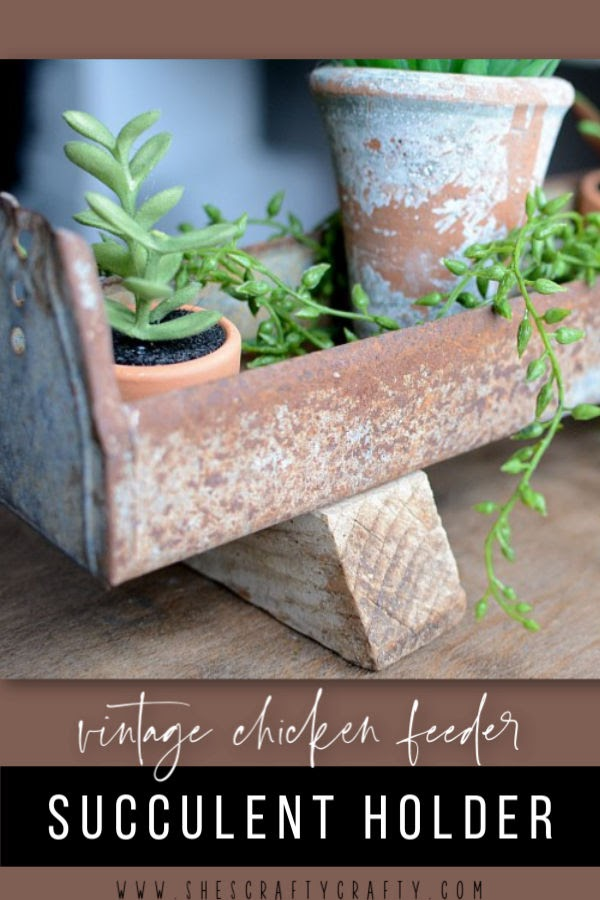Vintage Chicken Feeder Succulent Holder |  use a rusty, vintage chicken feeder to hold succulents for Spring  |   She's Crafty