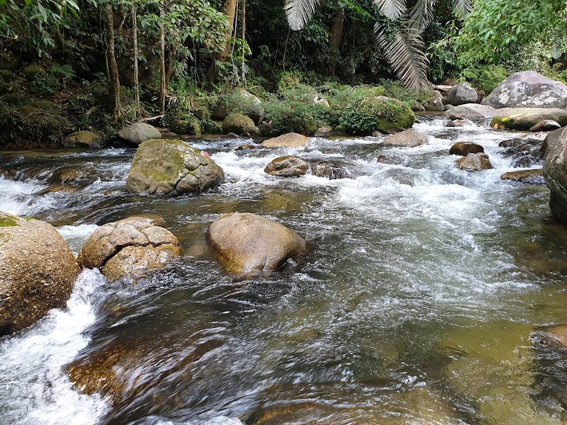 Mandi Manda di Hutan Lipur Sungai Sedim