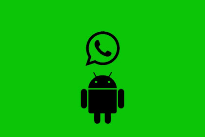 WhatsApp Android APK (Application Package)