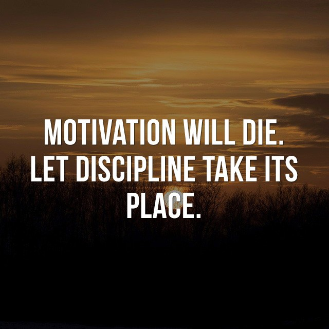 Motivation will die, let discipline take its place. - Picture Quotes
