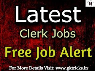 Clerk Jobs
