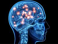 7 Easy Tips to Sharpen Brain Memory
