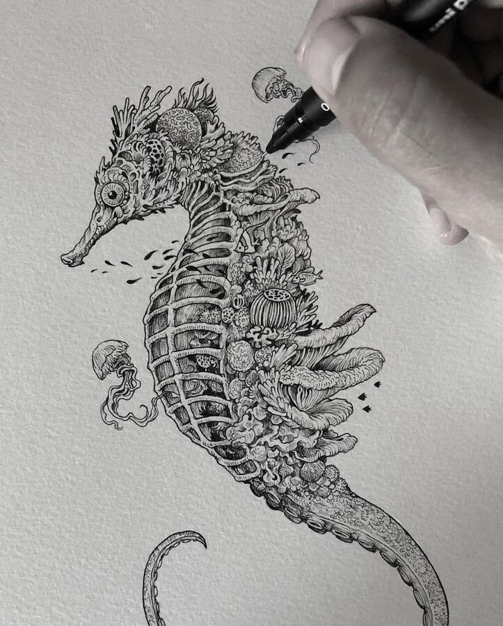 02-Coral-seahorse-and-jellyfish-Kerby-Rosanes-www-designstack-co