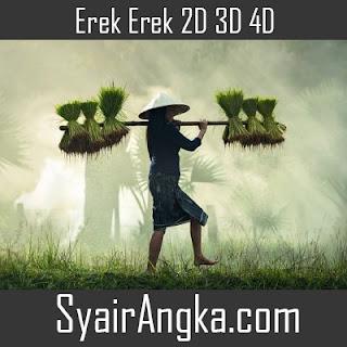 Erek Erek Menjadi Petani 2D 3D 4D