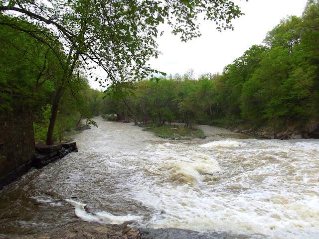 Mill Creek Gorge