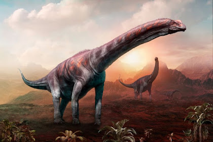 Hewan-hewan Terbesar Sepanjang Sejarah Peradaban