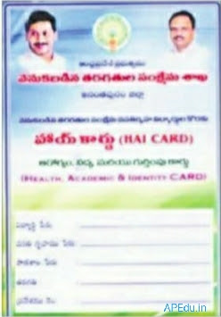 Govt to issue special identity card to students of BC