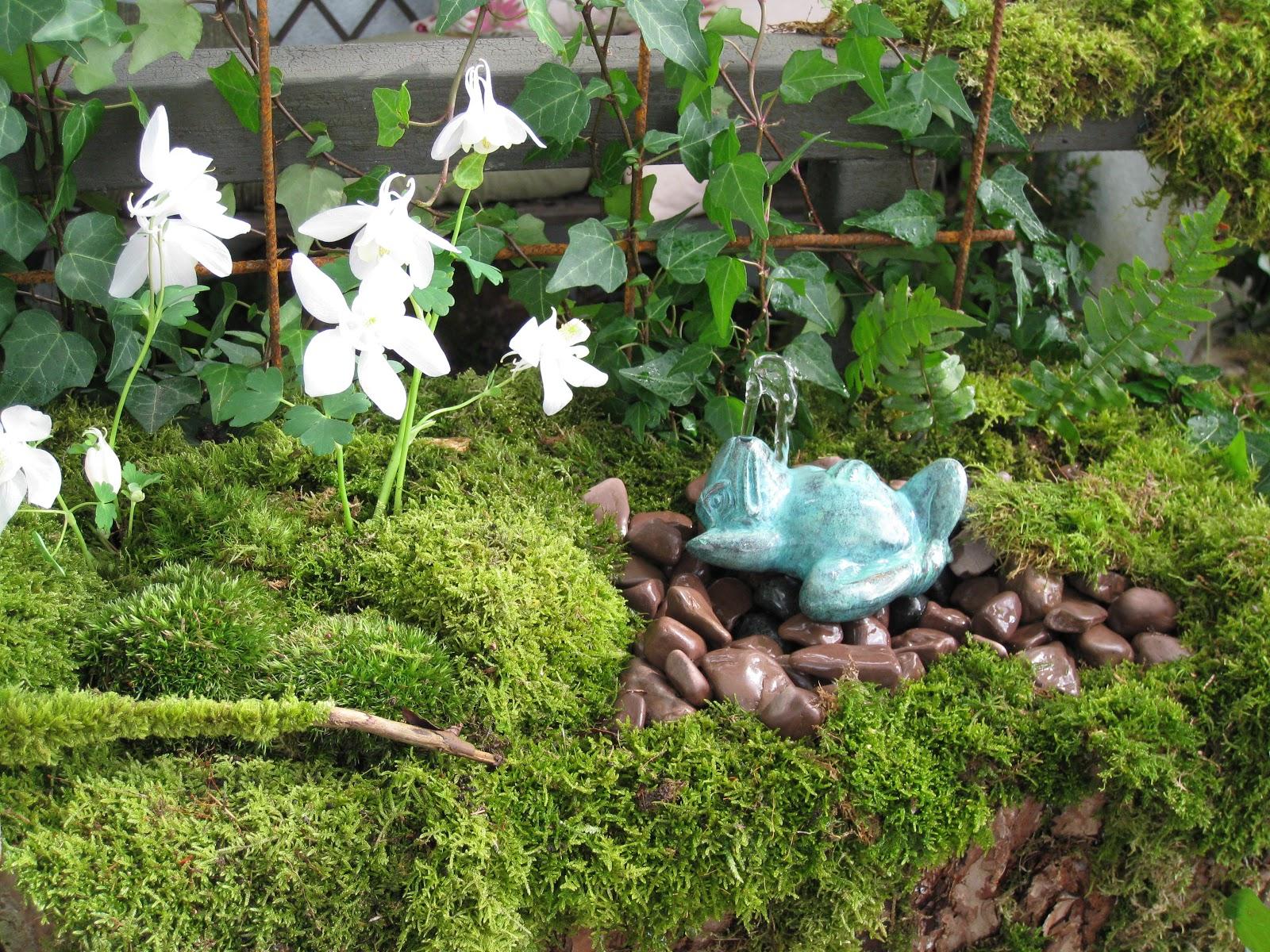 Trädgård och design för alla: Sense Garden Trädgårdsdesign