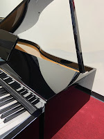 Kawai DG30 digital mini grand piano with soundboard
