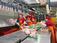 Weissrussland liefert Fleisch