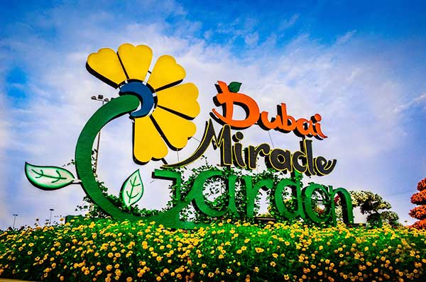 Traveling Dubai to stroll the giant Miracle Garden