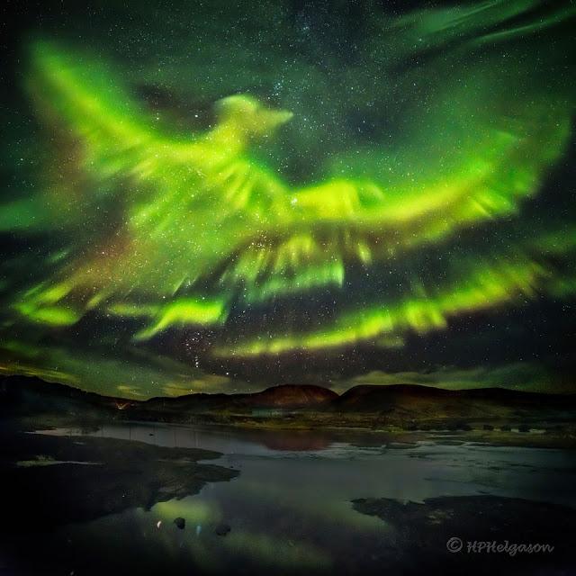 Cực quang phượng hoàng trên bầu trời Iceland. Tác giả : Hallgrimur P. Helgason.
