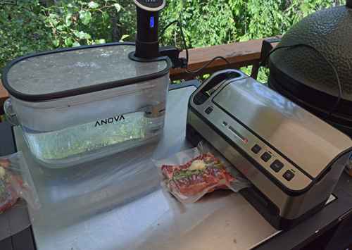 Don't cheap out when buying a vacuum sealer, get a nicer one that is built to last.