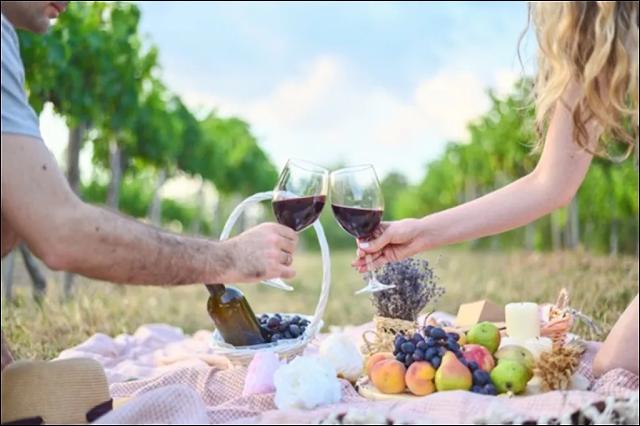 Health Benefits of Wine Drinking