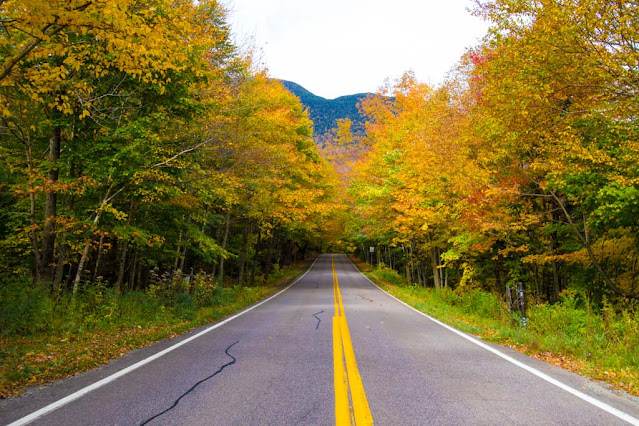 Foliage al Monte Mansfield-New England